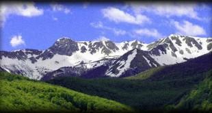Parchi abruzzesi: Il WWF interviene per sollecitare le nomine, in molti casi attese ormai da anni