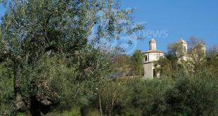 Pianella: Piano olivicolo comunale rinnovato per il 2020