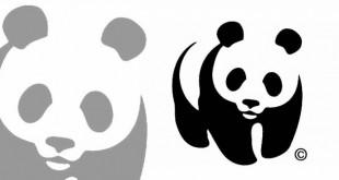 Nell'Oasi WWF di Anversa si coniugano turismo responsabile e tutela dell'ambiente