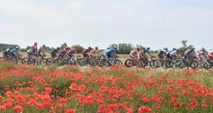 100 anni di Giro d'Italia, Di Matteo auspica una tappa sul Blockhaus