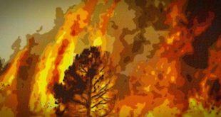 Teramo, il Comune emana un'ordinanza per la prevenzione degli incendi