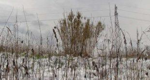 Meteo: ancora neve sull'Abruzzo, possibile aumento delle minime
