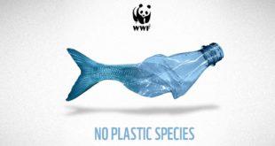 """Approda in Abruzzo la campagna WWF """"Plastic Free"""""""