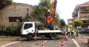 Montesilvano, il comune ripulisce l'area privata tra via Martiri d'Ungheria, via Roma e via San Pietro