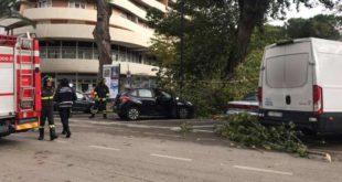 Maltempo a Pescara, albero cade su una donna ferendola