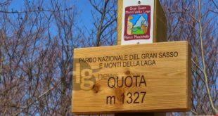 """Regolamento del Parco Nazionale del Gran Sasso e Monti della Laga:Il WWF """"Non convince il metodo seguito per la stesura dell'atto"""""""