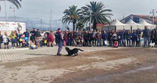 Grande successo per la seconda edizione di QuattroZampe Expo a Pescara