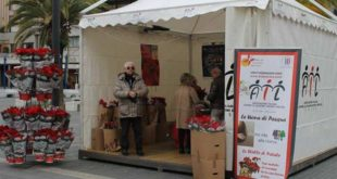 Le Stelle dell'Ail compiono 30 anni. Da venerdì 7 dicembre torna la campagna di solidarietà nelle piazze di Pescara.