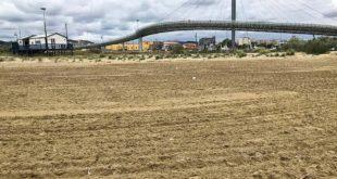 """Il WWF denuncia """"arature"""" a Pescara nel Parco naturalistico delle dune"""