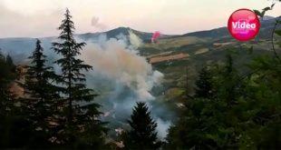 Fuochi d'artificio disturbano le aquile e  fauna rara alle Gole di Taranta Peligna nel Parco della Majella -VIDEO