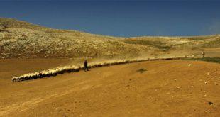 Emergenze Mediterraneea Pineto la presentazione del libroTRADIZIONI, CULTURE E SGUARDITRA IRAN E ITALIA
