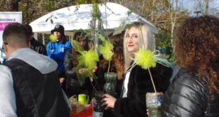 Festa dell'albero al parco della libertà: piantati nuovi alberi, faranno ombra al Dog Village