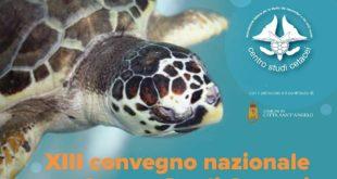 Sabato 14 a Città Sant'Angelo il XIII convegno nazionale del Centro Studi Cetacei