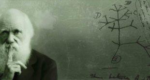 """Museo universitario di Chieti, un confronto tra scienza e magia per il """"Darwin Day"""" 2020"""