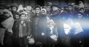 """Il Comune di Martinsicuro e l'Istituto Comprensivo """"S. Pertini"""" celebrano la """"Giornata della Memoria"""". Due eventi rivolti agli studenti"""
