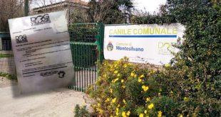 """Dog Village diffida tra soci per un'assemblea indetta Parco della Libertà. Feriozzi """"inevitabile assembramento"""""""