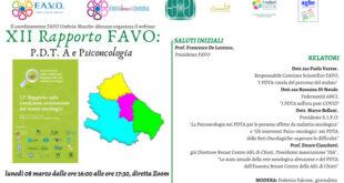 La condizione assitenziale dei malati oncologici, XII Rapporo Favo: webinar online sulla piattaforma Zoom