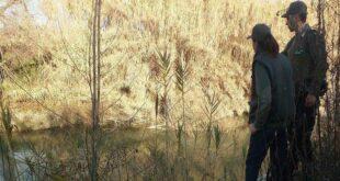 Acque nere nel fiume Pescara: Conclusa dai Carabinieri forestali l'indagine avviata nel 2019