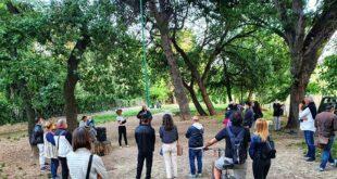 Movimento 5 Stelle e associazioni ambientaliste  chiamano a raccolta i cittadini per evitare l'abbattimento di 58 alberi secolari in via Pantini