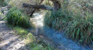 Delegazione FAI di Pescara : Giornate FAI di Primavera presso il Parco Naturale Sorgenti del Lavino a Scafa.