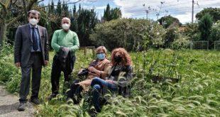 """Parco della Libertà a Montesilvano: le opposizioni """"all'abbandono, è desolante e spettrale"""""""